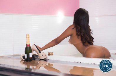 Book a meeting with Adriana Mendez in Stirling City today