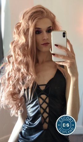 Perrie TS is a sexy Brazilian Escort in Virtual