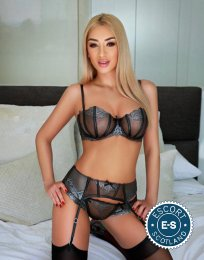 Book a meeting with Hot Amellie in Dundee today