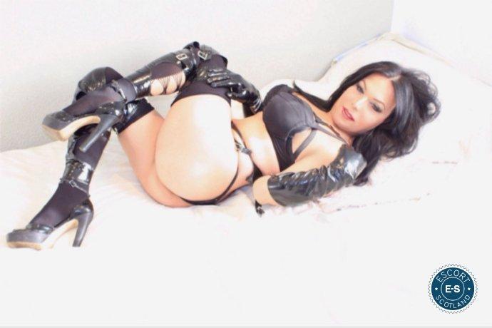 TS Kimberly is a hot and horny Spanish Escort from Virtual